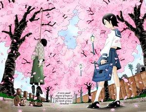 Rating: Safe Score: 39 Tags: black_hair cherry_blossoms clouds fuura_kafuka grass hanging itoshiki_nozomu petals sayonara_zetsubou_sensei seifuku short_hair skirt sky socks tree User: Oyashiro-sama