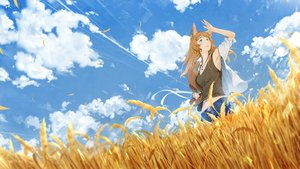 Rating: Safe Score: 49 Tags: animal_ears blue_eyes brown_hair catgirl clouds necklace original sky somehira_katsu User: FormX