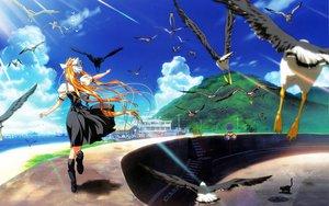 Rating: Safe Score: 5 Tags: air animal beach bird clouds kamio_misuzu User: Oyashiro-sama