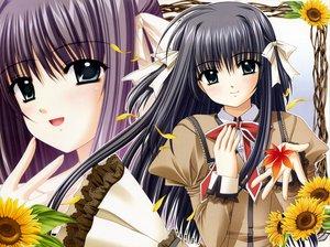 Rating: Safe Score: 8 Tags: autumn black_hair bow flowers green_eyes leaves long_hair nishimata_aoi really_really shuffle sunflower yae_sakura User: Oyashiro-sama