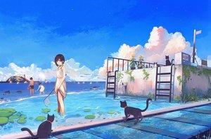 Rating: Safe Score: 70 Tags: animal cat dress hanasei original sky water User: FormX