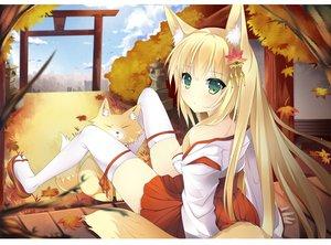 Rating: Safe Score: 261 Tags: animal animal_ears autumn blonde_hair duji_amo fox foxgirl green_eyes japanese_clothes leaves long_hair miko original tail thighhighs torii User: opai