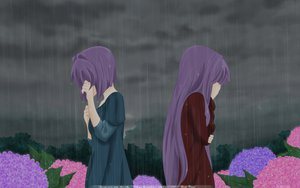 Rating: Safe Score: 42 Tags: clannad crying dark dress flowers fujibayashi_kyou fujibayashi_ryou long_hair night purple_hair rain short_hair vector User: pantu