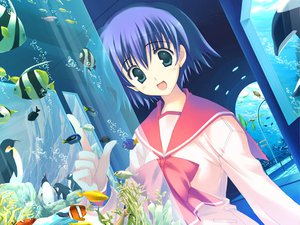 Rating: Questionable Score: 6 Tags: aquaplus game_cg leaf mitsumi_misato to_heart to_heart_2 User: xararx
