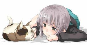 Rating: Safe Score: 64 Tags: aliasing animal cat denkishowgun nagato_yuki school_uniform shamisen suzumiya_haruhi_no_yuutsu white User: HawthorneKitty
