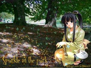 Rating: Safe Score: 7 Tags: black_eyes black_hair forest japanese_clothes kimono leaves ponytail tagme tree User: Oyashiro-sama