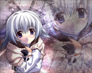 Rating: Safe Score: 5 Tags: animal cat memories_off tagme User: Oyashiro-sama