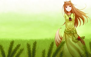 Rating: Safe Score: 95 Tags: ayakura_juu green horo spice_and_wolf User: Pilop