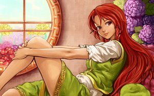 Rating: Safe Score: 89 Tags: braids flowers hong_meiling red_eyes red_hair shiba_murashouji touhou User: PAIIS