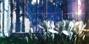 Rating: Safe Score: 39 Tags: 3d building flowers forest nobody original scenic tree waisshu_(sougyokyuu) User: RyuZU