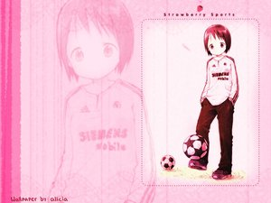 Rating: Safe Score: 6 Tags: ball ichigo_mashimaro itou_nobue soccer sport User: Oyashiro-sama