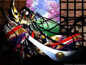 Rating: Safe Score: 25 Tags: black_hair blue_eyes cherry_blossoms clamp flowers long_hair sword tsubasa_reservoir_chronicle weapon User: Oyashiro-sama