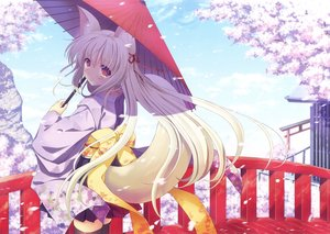 Rating: Safe Score: 59 Tags: animal_ears blonde_hair blush cherry_blossoms foxgirl japanese_clothes long_hair nanao_naru petals scan tail thighhighs umbrella zettai_ryouiki User: RyuZU