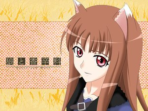 Rating: Safe Score: 13 Tags: animal_ears brown_hair horo long_hair red_eyes spice_and_wolf vector wolfgirl User: Oyashiro-sama