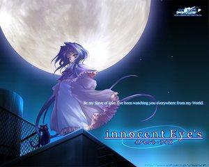 Rating: Safe Score: 9 Tags: animal blue_hair cat innocent_eyes moon night purple_eyes sky User: Oyashiro-sama