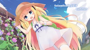 Rating: Safe Score: 45 Tags: animal aqua_eyes blonde_hair blush dress fang flowers frog hat loli long_hair original solar_milk summer summer_dress thighhighs torii twintails waifu2x wristwear User: otaku_emmy
