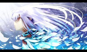 Rating: Safe Score: 79 Tags: blue long_hair original pen_(pixiv257621) petals pointed_ears red_eyes white_hair User: Zolxys