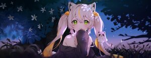 Rating: Safe Score: 61 Tags: animal_ears catgirl cheli_(kso1564) dan_gyuri flowers grass green_eyes long_hair night stars twintails white_hair User: BattlequeenYume