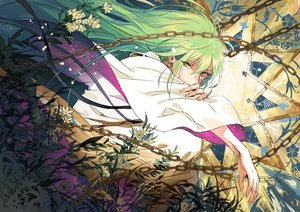 Rating: Safe Score: 51 Tags: all_male bicolored_eyes chain enkidu fate/grand_order fate_(series) flowers green_hair leaves long_hair male seomouse User: otaku_emmy