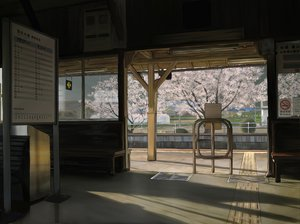Rating: Safe Score: 136 Tags: cherry_blossoms flowers landscape original scenic spring yume32ki User: Dust