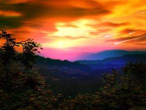 Rating: Safe Score: 45 Tags: clouds forest landscape leaves scenic sky sunset tree User: Oyashiro-sama