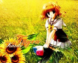 Rating: Safe Score: 14 Tags: blue_eyes bow flowers fuyou_kaede headband orange_hair sakaki_maki school_uniform short_hair shuffle sunflower thighhighs User: Oyashiro-sama