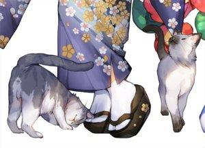 Rating: Safe Score: 41 Tags: animal cat japanese_clothes original waifu2x white whoisshe User: RyuZU