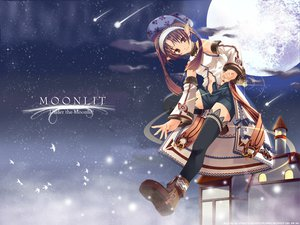Rating: Safe Score: 22 Tags: animal bird boots brown_eyes brown_hair hat headdress jpeg_artifacts moon navel pointed_ears shorts sky stars tagme_(artist) thighhighs watermark User: Oyashiro-sama