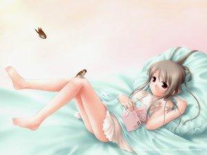Rating: Safe Score: 45 Tags: animal barefoot bed bird book brown_eyes brown_hair nopan purple_eyes User: Oyashiro-sama
