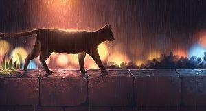 Rating: Safe Score: 96 Tags: animal cat night nobody original pasoputi polychromatic rain water User: BattlequeenYume