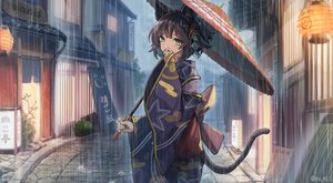 Rating: Safe Score: 73 Tags: animal_ears blush brown_hair building catgirl green_eyes japanese_clothes original rain short_hair tail umbrella water watermark yukata yu_ni_t User: SciFi