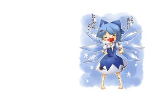 Rating: Safe Score: 29 Tags: cirno fairy torn_clothes touhou viva!! white wings User: SciFi