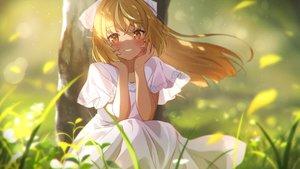 Rating: Safe Score: 83 Tags: blonde_hair blush dress grass hololive long_hair narumi_nanami orange_eyes pointed_ears shiranui_flare summer_dress User: BattlequeenYume