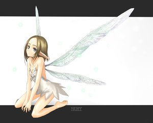 Rating: Safe Score: 71 Tags: barefoot fairy kotoba_noriaki original wings User: PAIIS