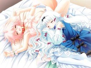 Rating: Safe Score: 33 Tags: 2girls animal_ears doggirl game_cg lily_(w&l) sakurazawa_izumi sleeping tail waifu2x wanko wanko_to_lily User: luckyluna
