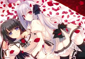 Rating: Safe Score: 125 Tags: 2girls black_hair gray_hair hananomiya_mizuho long_hair navel_(company) nishimata_aoi petals sakurakouji_luna scan seifuku suzuhira_hiro thighhighs tsuki_ni_yorisou_otome_no_sahou User: Wiresetc