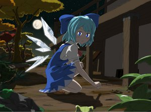 Rating: Safe Score: 30 Tags: animal blue_eyes blue_hair bow buncha_to_imon cirno fairy frog moon night short_hair sky stars touhou tree wings User: gnarf1975