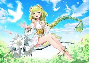 Rating: Safe Score: 34 Tags: afk_arena animal barefoot bird blush braids clouds dress flora_(afk_arena) flowers green_eyes green_hair long_hair ponytail power_(lu_power) sky User: Maboroshi