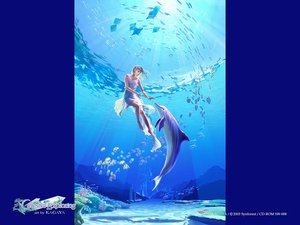 Rating: Safe Score: 25 Tags: animal blue celestial_exploring dolphin fish kagaya underwater water User: Oyashiro-sama