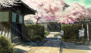 桜・花見の壁紙 1980×1167px 1579KB