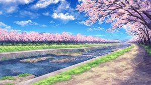 桜・花見の壁紙 1280×720px 1542KB