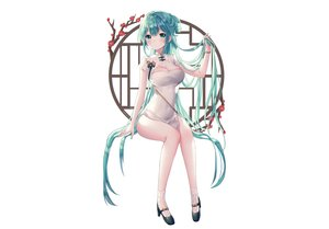 Rating: Safe Score: 130 Tags: albinoraccoon blush breasts chinese_clothes chinese_dress cleavage dress flowers green_eyes green_hair hatsune_miku long_hair signed socks vocaloid white User: otaku_emmy