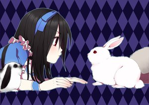 Rating: Safe Score: 76 Tags: alice_(wonderland) alice_in_wonderland animal black_hair headband long_hair rabbit red_eyes User: Katsumi