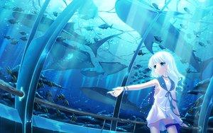 Rating: Explicit Score: 103 Tags: animal fish hinasaki long_hair water white_hair User: Tensa