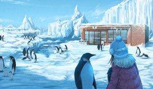 Rating: Safe Score: 50 Tags: animal black_hair building clouds hat original penguin roke_(taikodon) scenic short_hair sky snow User: RyuZU