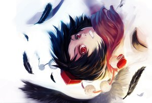 Rating: Safe Score: 76 Tags: feathers hat red_eyes shameimaru_aya sola7764 tagme touhou wings User: opai