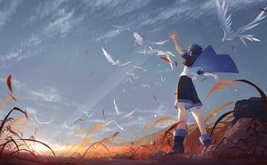 Rating: Safe Score: 43 Tags: all_male animal arsh_(thestarwish) bird blue_hair boots clouds grass male original short_hair shorts sky sunset User: otaku_emmy