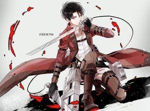 Rating: Safe Score: 15 Tags: all_male black_hair gloves gray_eyes levi_ackerman male michi_(iawei) shingeki_no_kyojin short_hair sword weapon User: FormX