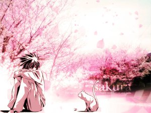 Rating: Safe Score: 25 Tags: all_male animal cat death_note l male polychromatic User: Naisha