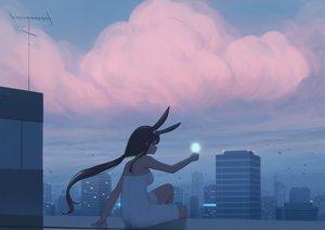 Rating: Safe Score: 39 Tags: animal_ears building bunny_ears city clouds kamu_kame long_hair original ponytail rooftop sky sunset User: sadodere-chan